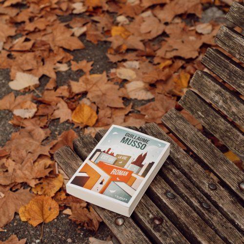 La vie est un roman Guillaume Musso